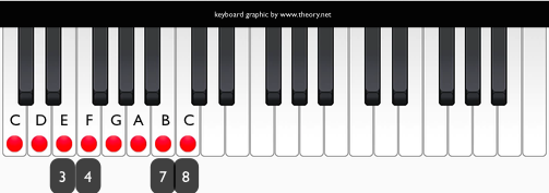 how to add key signature in musescore